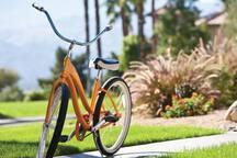Bike and walking paths