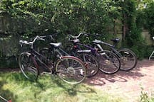 Bicycles for peddling around the Borough