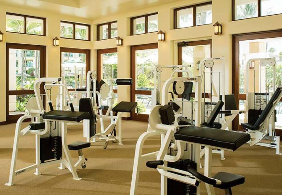 Beautiful luxury gym