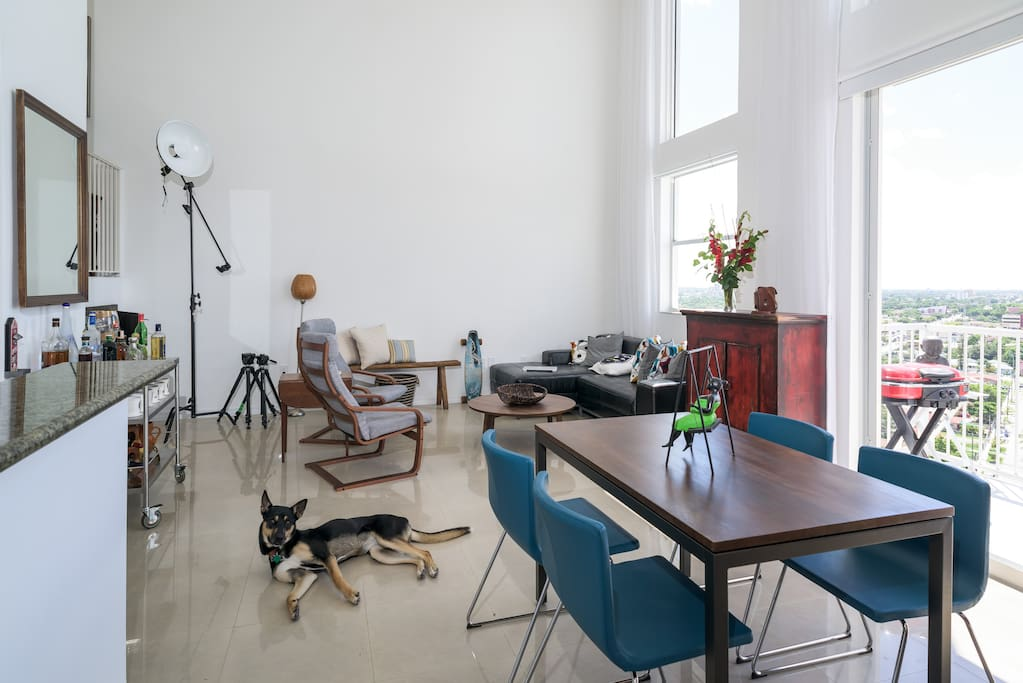 Living room, dinning room and Mahi (My super friendly dog)  as seem from the door of your room