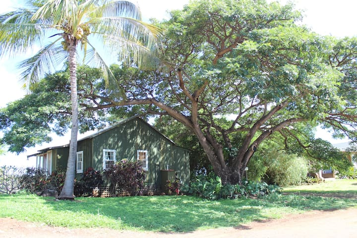 The Pali Cottage at Waimea Heights - 威美亞(Waimea) - 平房