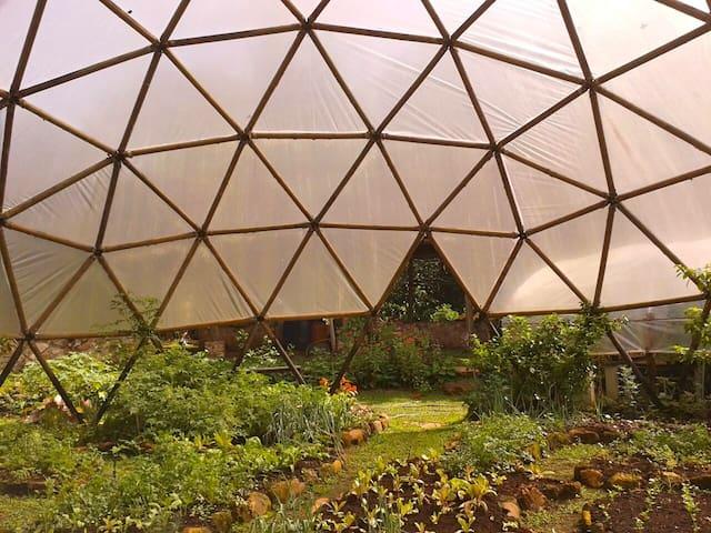 Eco Village living - San Mateo - Dom