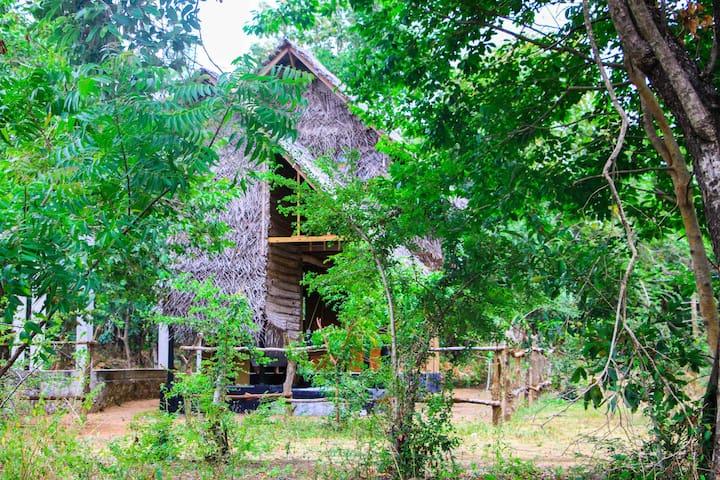 Sigiri Tree House