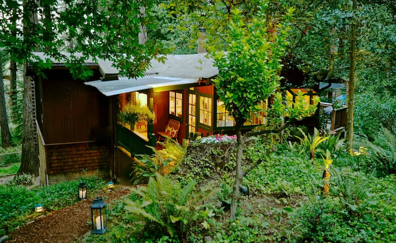 Pippin's Cottage - A Forest Haven - Woodacre - Huis