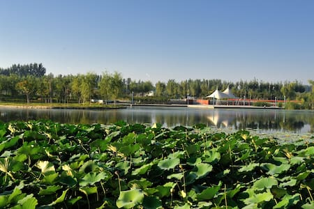 北京市平谷区马坊镇芳轩园 - Pequim