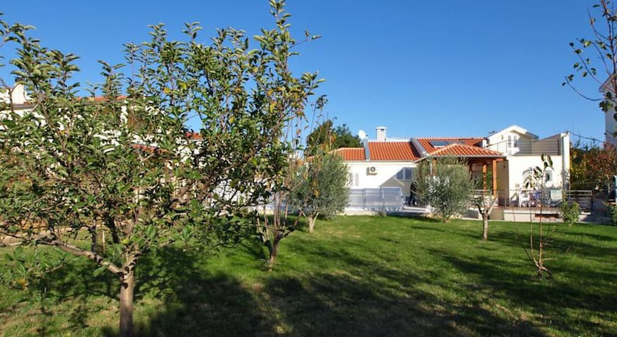 Villa Zadar,sensual  place - Zadar - Villa