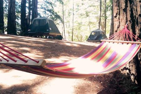 Tent 2 - Forest Retreat Center - Guerneville