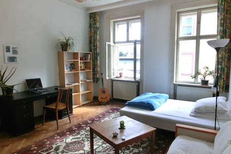 Big fancy room next to Yppenplatz - Wien - Huoneisto