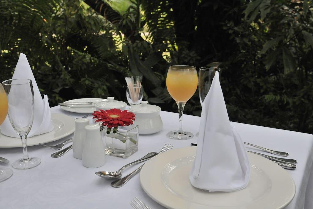 Breakfast in the garden or on the terrace
