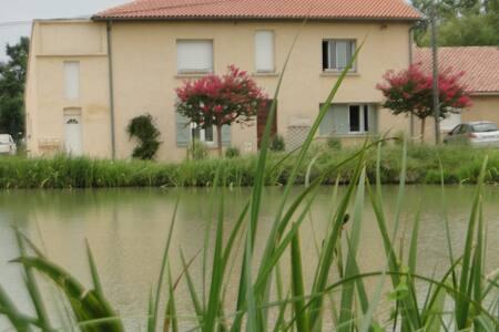 gîte 45 m2  dans une pisciculture - Montech - Apartment - 2