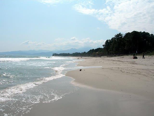 Bungalow à la plage