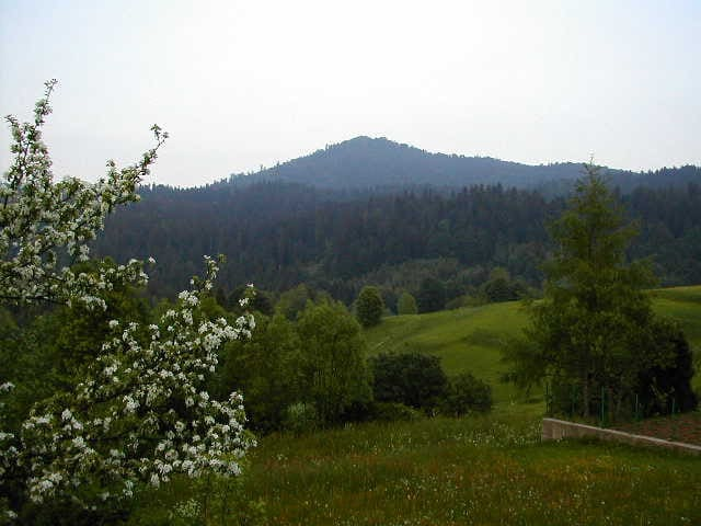 Mountain Holiday PRIVATE En- Suite room (2 people) - Crni Lug - Apartment
