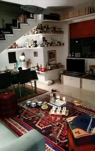 IN COLLINA A PISA CASA ACCOGLIENTE - Bientina - Apartamento