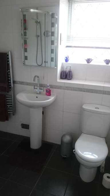 Toilet sink and shower.