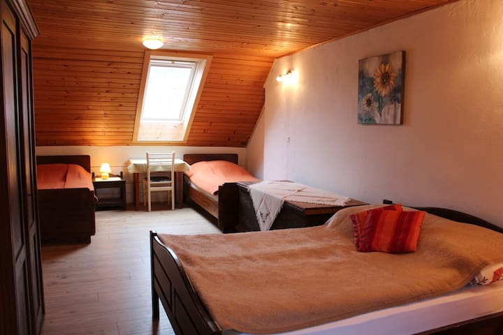 family room for 4, attic, Hostel Bohinj - Stara Fužina - Bed & Breakfast