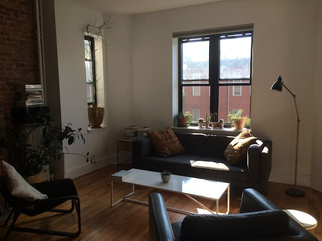 Spacious apt. near Prospect Park
