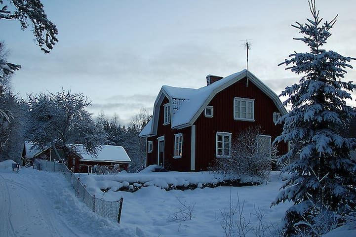 The little house in the Forest - TÖLLSJÖ - Bed & Breakfast