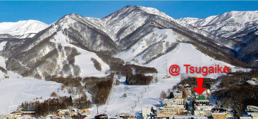 @tsugaike ski in/out lodge - Hakuba - Bed & Breakfast