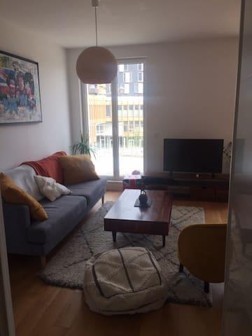Appartement de 44m2 avec balcon filant, vue sur Parc. (Grande chambre, grand salon avec cuisine américaine, moderne et équipé (lave linge, lave vaisselle, café, micro onde...)