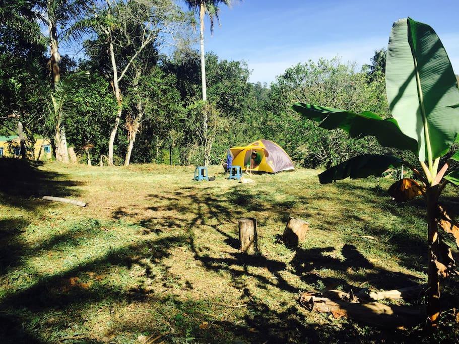Zona de camping amplia. Con un capacidad total de entre 15 y 20 carpas.