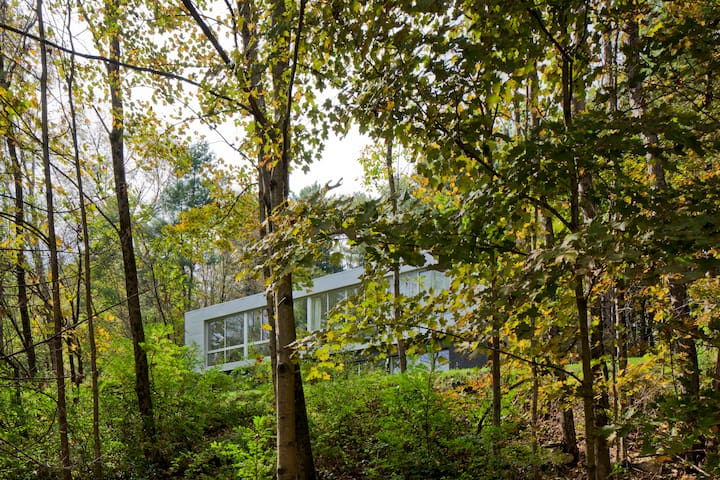 Glass House in the Berkshire Woods - New Marlborough - Dom