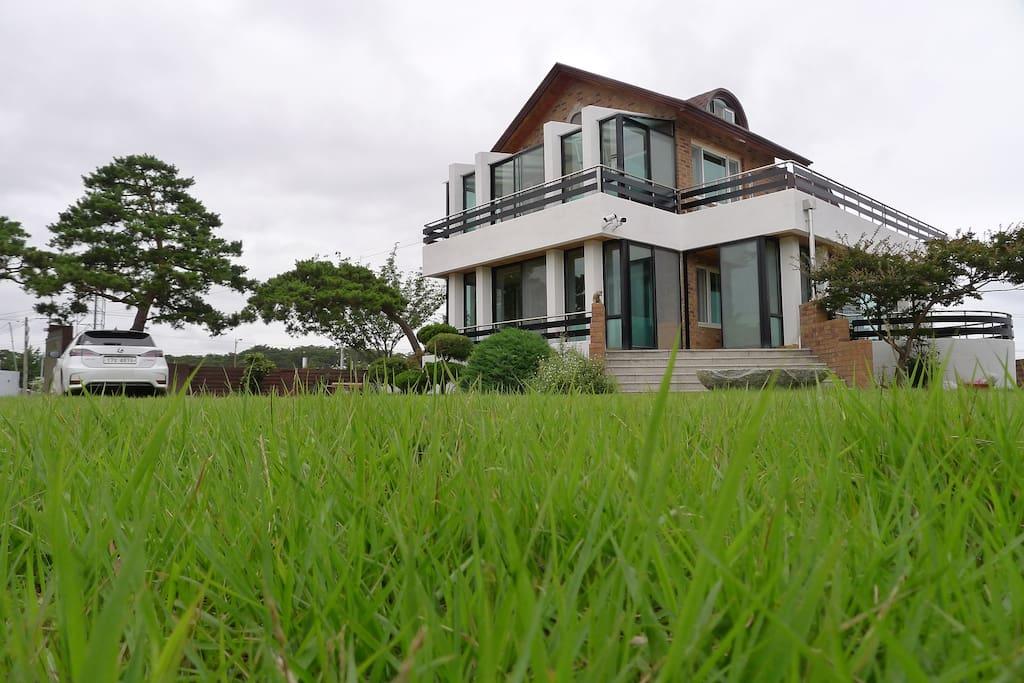 넓은 잔디밭