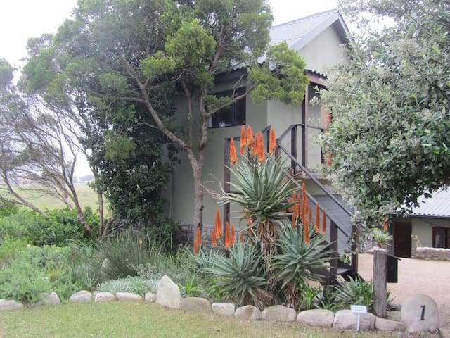Aloe Cottage - Cape Town