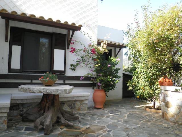 Quiet cozy seashore villa, Greece - Thermissia  - 別荘