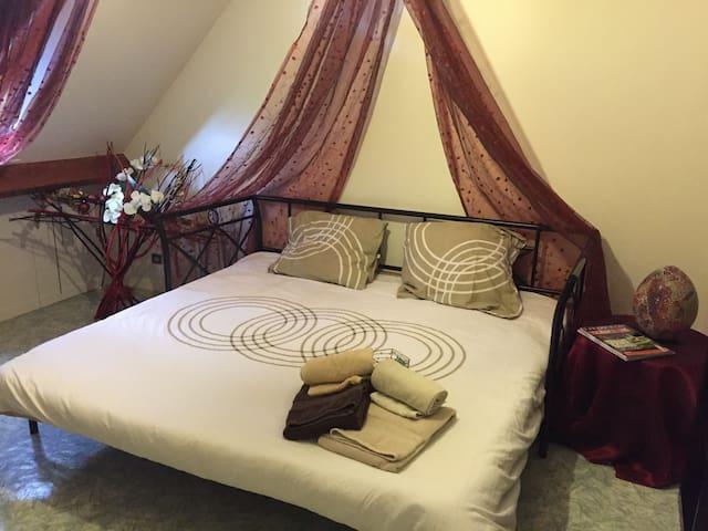 Chambre dans pavillon près Disney - Claye-Souilly
