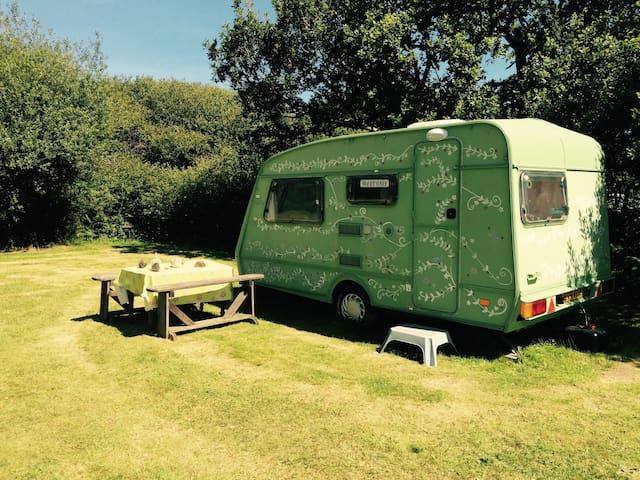 Fern: cute caravan on pretty farm. - Saint Austell - Camper/RV