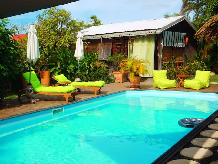 Soleil et Cocotier bungalow vert