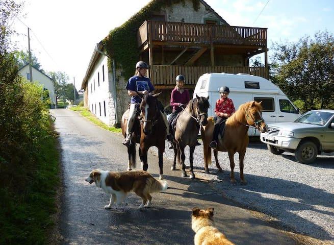 Bauernstube Ourtalhof - Burg-Reuland - Leilighet