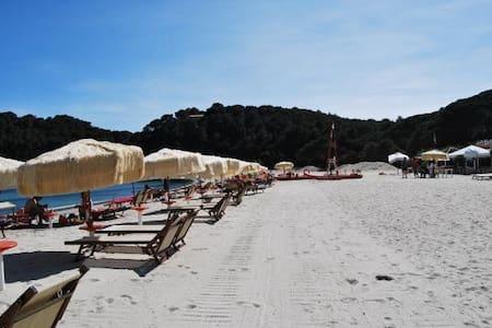 Isola d'Elba Fetovaia - Fetovaia