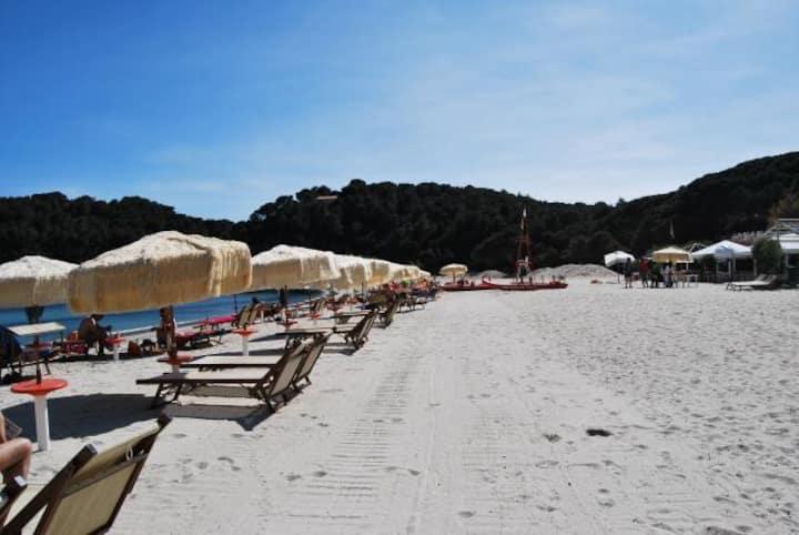 Island Elba Tuscany Fetovaia Bay