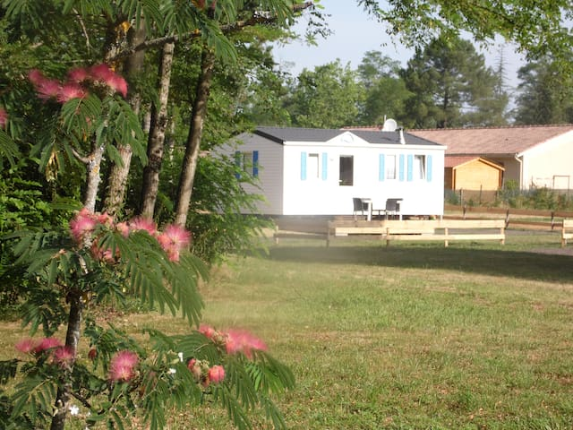 Bungalow dans un poney-club - Hostens - Bungalov