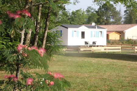 Bungalow dans un poney-club - Hostens - Bungalow
