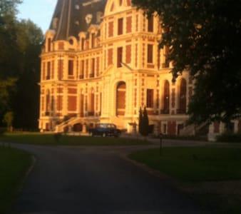 Bel appartement dans château - Saint-Martin-Longueau - Flat