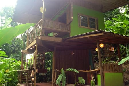 Photosynthesis Jungle Bungalows