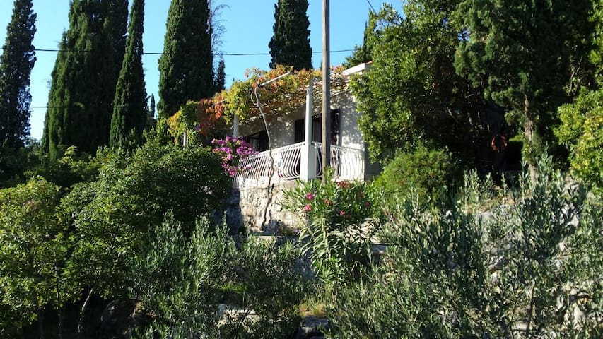 A sea view house with a huge garden - Molunat - Casa