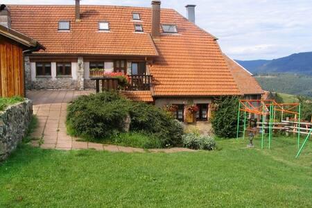 grand gite avec terrasse + jardin - Ev