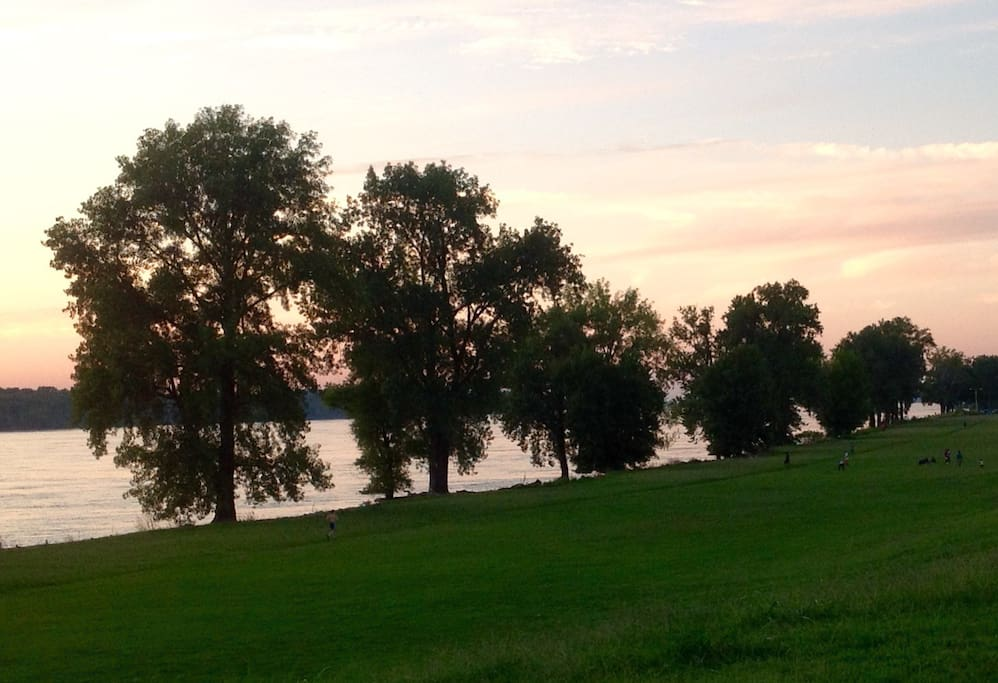 View of the Mississippi at sunset from the Mud Island Park trail (seconds from my doorstep)!