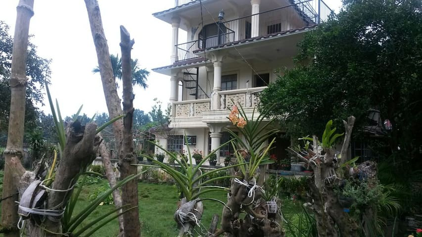 3 Story family house