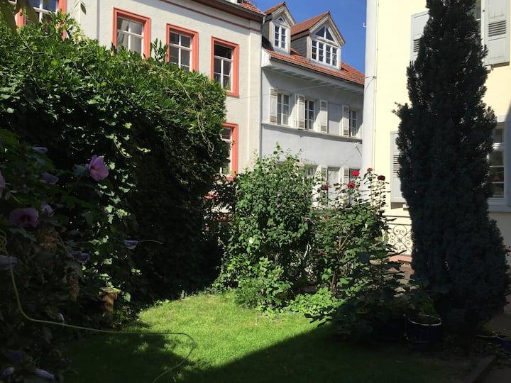 Luxury apartment in historic center
