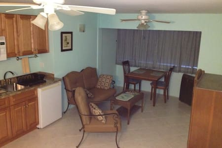 Oasis overlooking Christiansted - Christiansted - Condominium