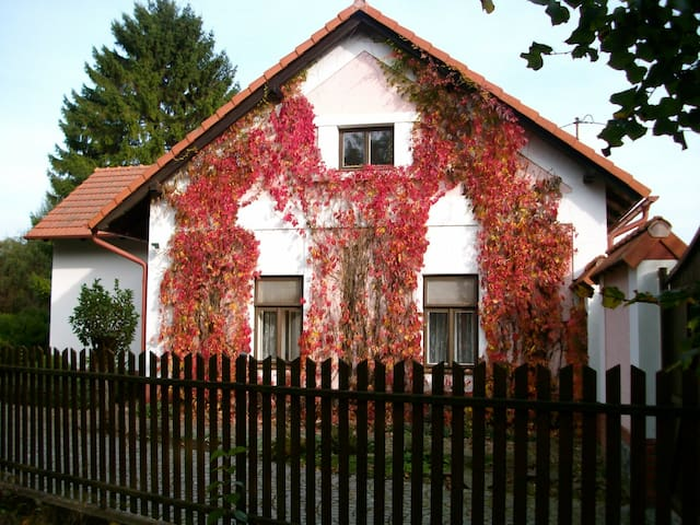 Side façade of the house..