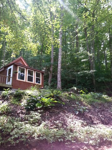 Littlest House in the Big Woods - Sylva - Ev