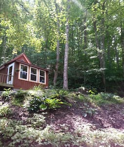 Littlest House in the Big Woods - Sylva - House