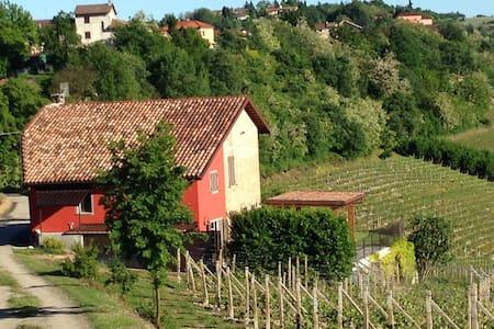 Villa Bricchetta - Costigliole d'Asti