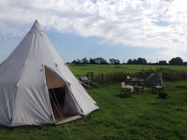 Private camping in 10 acres - Lacock - Tent
