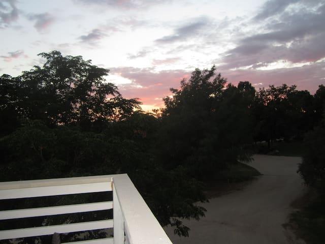 Tree Top  Retreat